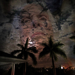 Up In the Atmosphere (soniaadammurray - On & Off) Tags: digitalphotography manipulated experimental collage abstract sky trees clouds atmosphere up selfportrait meagainmonday artchallenge