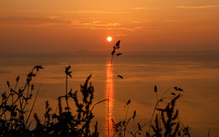 Sunset Grass (Andy.Gocher) Tags: andygocher canon100d 100d europe uk wales westwales pembrokeshire coastalpath silhouette silouette sunset sun reflection water
