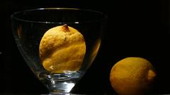 Zitronen im Glas (marionkaminski) Tags: brixen tirol tyrol italien italia italy glas zitrone impression dekoration panasonic lumixfz1000