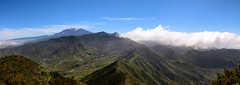 Wide scenery (Rico the noob) Tags: 2018 d850 landscape nature outlook mountains city outdoor panorama 2470mmf28 clouds trees hills published tree horizon forest house dof sky tenerife teneriffa 2470mm street mountain