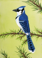 Blue Jay Painting (Dragongirl05) Tags: painting acrylic paint pretty perch pine branch nature jay bluejay minnesota