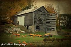 Fall In Northern Michigan (wolfman309) Tags: barn farm fall autumn michigan pumpkins scenic