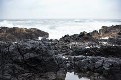Rock, Cape Perpetua, Oregon. (Matt Benton) Tags: digital leicam10 leica oregoncoast oregon