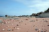 Isle of Cumbrae beach. (ia.n) Tags: seaside sonya700 scotland ayrshire beach cumbrae