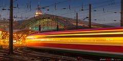 Arrival at Cologne Station (photofokus.de) Tags: lights night cologne eisenbahn köln nacht tageszeit rails abend tracks railway schienen hbf station dunkel