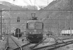 brig #62 (train_spotting) Tags: valais brig sbbcffffs sbbcargoag re6200877 re6611687 bischofszell nikond7100