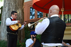 Texan Musicians at Work (CarolMoore007) Tags: paseodelríosanantoniorivers musicians music guitar trumpetboatsrestaurantstexasusasanantonioriversanantonioriverwalk