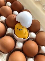 Gudetama (tiramisu_addict) Tags: eggs minifigs toys sanriocharacters sanrio lazyegg gudetama