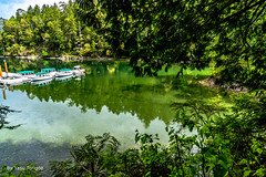 Butchard Gardens Vancouver Island British Colombia Canada-66 (Yasu Torigoe) Tags: brentwoodbay britishcolumbia canada ca