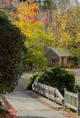 Bridgewater Mill (Trace Connolly Photography) Tags: red yellow green orange autumn autumnal bridge brick stone path colour colours color colors colourful colorful town australia outside texture tourism flickr sigma canon