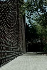 Spring2018018 (jtleagles) Tags: dizzy fence urban focus depthoffield branch perspective nikond3400 urbannature jtleagles sidewalk concrete chain chainlinkfence
