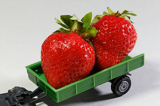 Strawberry harvesting [explored 19.6.2018]