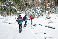 20180203-IMG_2950-Edit (franciscoruela) Tags: hiking winter landscape mt garvey