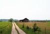 Country road/Seoski put (salaminijo) Tags: road grass sky field skyline polje outdoor landscape greenvalleys tree nature scenery krajolik paysage fence serbia serene canon europe evropa