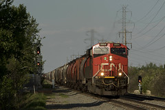 829 at Riverbend (Trevor Sokolan) Tags: g829 grain hoppers es44ac ge generalelectric diesel locomotive riverbend alberta ab vegrevillesub canadian canada cn cnr canadiannational signals signal ctc railway railroad railfan rail railfanning trains train trainspotting tracks