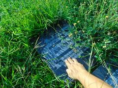 DSC00527 (joeymasong@yahoo.com) Tags: jaypee cemetery 墓地 公墓 陵園 memorialpark 紀念墓園 puntod grave graveyard 墳墓 掃墓 pandayan meycauayan 梅卡瓦延 meycauayancity 梅卡瓦延市 梅卡瓦延城市 bulacan 布拉幹省 philippines 菲律賓