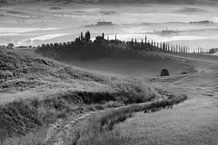 Val D'Orcia dawn (DavidO'Brien) Tags: tuscany valdorcia sonya7r digital mist cypresstrees