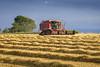 Combine Harvester (technodean2000) Tags: lexion 750 wheet wheat combine harvester grass tractor sky truck field road tree ©technodean2000 lr ps photoshop nik collection nikon technodean2000 flickr photographer d810 wwwflickrcomphotostechnodean2000 www500pxcomtechnodean2000