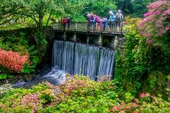 Water Fall (Tony Shertila) Tags: talycafn wales unitedkingdom europe britain north bodnant bodnantgardens nationaltrust garden estate water waterfall bridge people