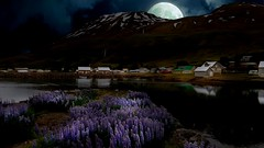 From Iceland. (Tóta. 27.12.1964.) Tags: landscape houses water flower moon mountain clouds iceland ísland seyðisfjörður