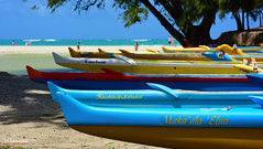 Canoe Club in Kailua, Oahu (wyattgphotography) Tags: oahu canoe cyan longboat beach surf club lanikai kailua