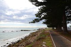 DSC_8683 shore, Mundy Terrace, Robe, South Australia (johnjennings995) Tags: shore coast robe southaustralia sea australia