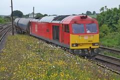 Buttercups and Daisies (JohnGreyTurner) Tags: br rail uk railway train transport barnetby lincolnshire diesel engine locomotive freight db dbs dbc ews 60 class60 tug brush type5 oil tanks