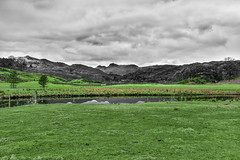Green Grass (StevePilbrow) Tags: river brathay national trust green grass fell lake district park cumbria lakes north west england country side water walking trees hill pike nikon d7200 nikkor 18105mm march april 2018