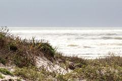 Dunes and sea - HBW! (RPahre) Tags: hbw bokeh padreislandnationalseashore padreisland dunes atlanticocean texas