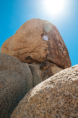 Joshua Tree_-20 copy (Gary Conaughton) Tags: california memorialday ca usa joshuatree joshuatreenationalpark rocks cactus cholla bluesky