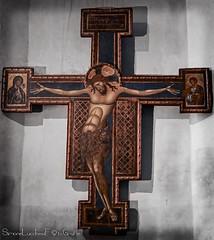 Giunta Pisano 1250 Crucifisso - Basilica di San Domenico - Bologna (frillicca) Tags: 1250 2018 april aprile basilicadisandomenico bologna crucified crucifisso crucifix dipinto giuntapisano ligneo paint panasoniclumixlx100 wood