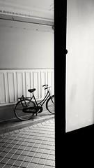 Depuis l escalier en attendant (JMG-Photos) Tags: velo porte cour paris