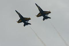 _DSC3231.jpg (Josh152) Tags: navy airshow fa18hornet nikon d800 fa18 chippewavalleyairshow blueangels figher plane nikond800 usn cvas18