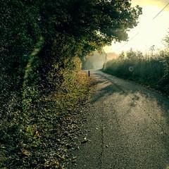 Path (Kol Tregaskes) Tags: koltphotography photo photography photooftheday pic picoftheday picture pictureoftheday