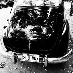 Voyager sans bouger... (woltarise) Tags: voiture suédoise volvo 444 montréal reflets arbres 6h30am