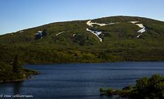 Nowegian nature (FotoRoar2013) Tags: 2018 fotoroar2013 fjell canon 5dmk3 norway norwegen noruega norge norvegia nature natur mountain green blue