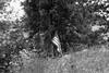 Homeless Encampment (Scott Micciche) Tags: ferrania filmferrania p30 kodak xtol 12 niikon f2 filmdev:recipe=11955 ferraniap30alpha80 kodakxtol film:brand=ferrania film:name=ferraniap30alpha80 film:iso=80 developer:brand=kodak developer:name=kodakxtol