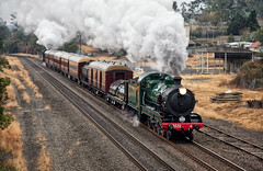 Back on Track (SJB Rail) Tags: 3526 3642 c35 c36 steam trains railways railroads new south wales picton heritage green