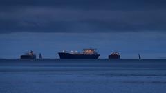 San Francisco Bay Evening (fksr) Tags: sanfranciscobay dusk evening ships tankers sailboats water seascape california
