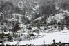 (hilariopv) Tags: hilarioperez ancares montañas frio invierno nieve blaco