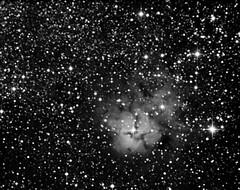 Nebulosa Trifida, M20. (Maurizio Ph) Tags: starlightxpress hx916 h9 ed80 heq5 deepsky astrometrydotnet:id=nova2625594 astrometrydotnet:status=solved