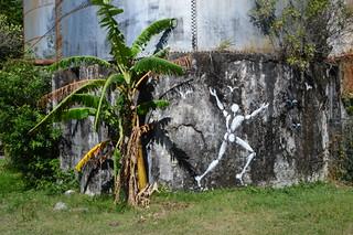 Bonhomme blanc, Jérôme Mesnager, Pierrefonds, Reunion Island