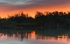 Sunrise over the Mangroves (Merrillie) Tags: daybreak woywoy landscape nature australia foreshore newsouthwales earlymorning nsw brisbanewater morning dawn coastal water sky waterscape sunrise centralcoast bay outdoors
