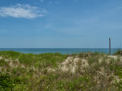 my current veiw (Dave_Bradley) Tags: ocean beach dunes grass landscape landscapephotography olympusodmem5 olympus