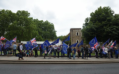 Img634658nxi_conv (veryamateurish) Tags: london westminster parliament housesofparliament abingdonstreet demonstration protest eu europeanunion brexit flags