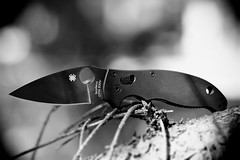 Spyderco, Manix 2. (EOS) 2 (Mega-Magpie) Tags: canon eos 60d outdoors spyderco manix 2 pocket knife sharp g10 handle cmp s30v madeusa tree branch bw black white mono monochrome tool