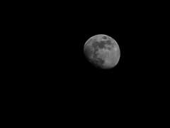 POTD 145 (Webtraverser) Tags: 365picturesin2018 blackandwhitephoto bwphotography everydayphotographer g85 lumix micro43 monochrome moon noir pad2018145 pictureofaday pictureoftheday potd2018 waxinggibbous