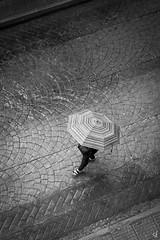 Rainy day (tzevang.com) Tags: rain bw umbrella street piraeus greece fujifilm x100f