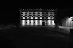 Musée du Petit Palais, Avignon (updownmo) Tags: blackandwhite historicalarchitecture architecture france avignon windows canon door buildings nightphotograph night dark darksky shadows trees history past present design details composition form shapes
