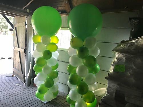 Ballonpilaar Breed Rond Tuincentrum de Heide Bergen op Zoom